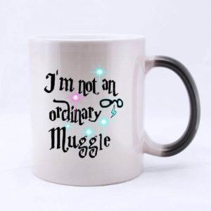 Harry Potter I'm Not an Ordinary Muggle Mug2
