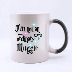 Harry Potter I'm Not an Ordinary Muggle Mug2