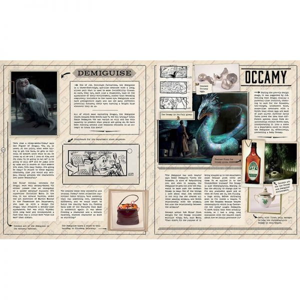 The Case of Beasts: Explore the Film Wizardry of Fantastic Beasts and Where to Find Them Book 14