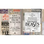 The Case of Beasts: Explore the Film Wizardry of Fantastic Beasts and Where to Find Them Book 3